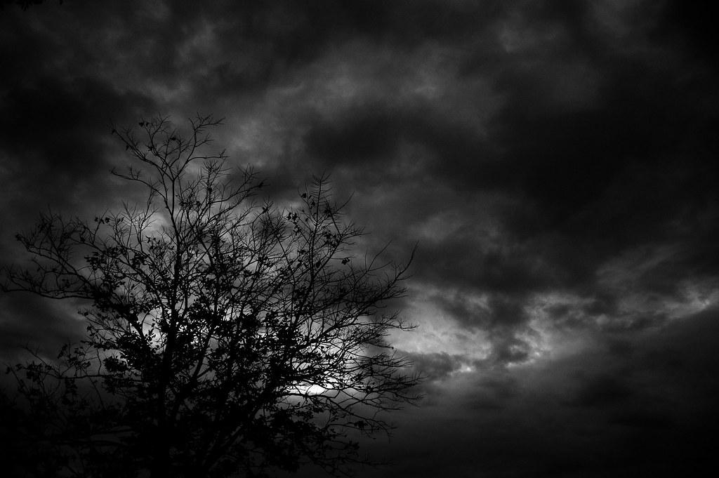halloween night sky jmrd40