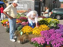 Beloit Farmers Market Color