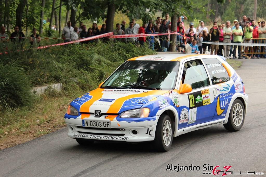 x_rally_sur_do_condado_141_20150307_1280547117