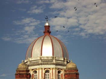 Birds atop Cooch Behar Rajbari