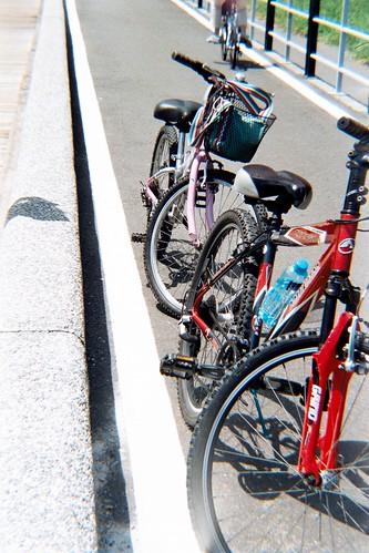 騎單車   正中午騎車,真覺得自己是個瘋子   camui71   Flickr