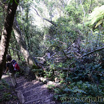 Viajefilos en Australia. Blue Mountains 003