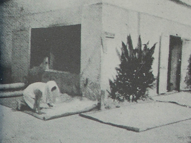 A Woman Drying Corn