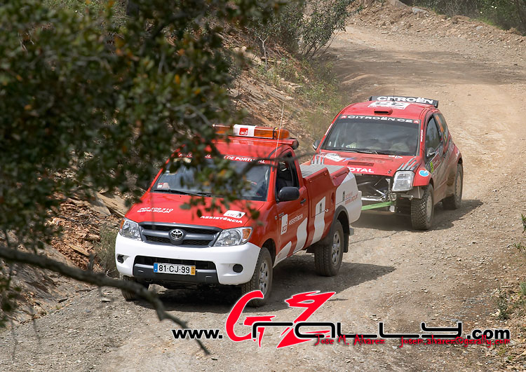 rally_de_portugla_wrc_96_20150302_1326124286