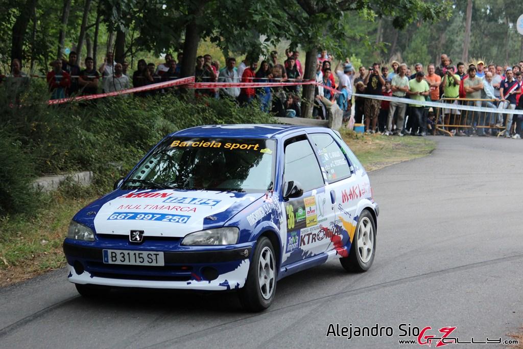 x_rally_sur_do_condado_188_20150307_1851165702