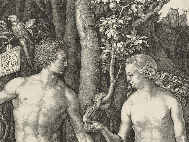 The Snake in Eden, 1504
