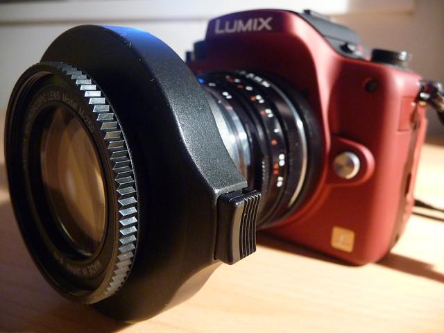 Raynox 250/ Nokton 40mm/ G1 combo