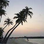Viajefilos en Maldivas 18