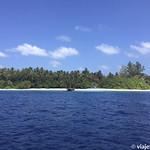 Viajefilos en Maldivas 45