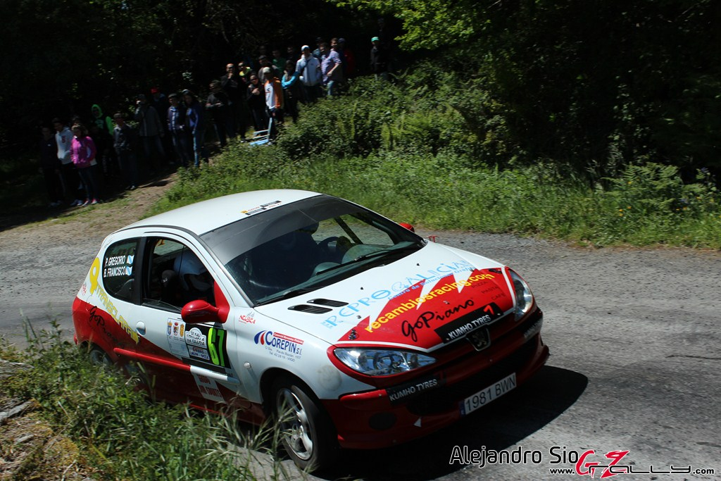 vi_rally_comarca_da_ulloa_12_20150307_1036434972