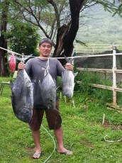 Bad weather conditions pays off with good fishing. Aloha, Clay