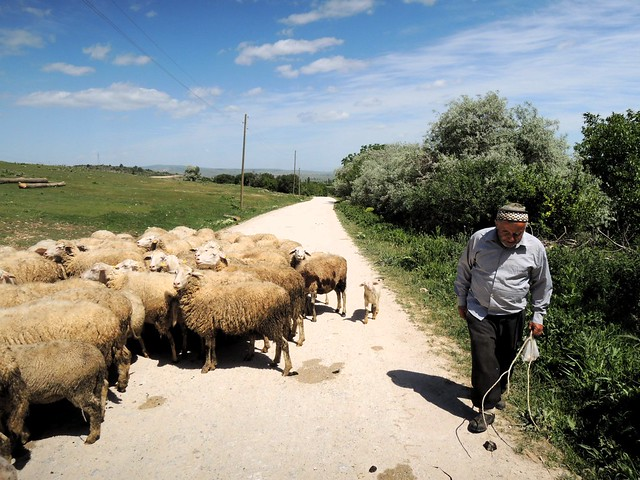 This man quite clearly explained to me which way I needed to go to avoid the main highway to Kütahya by bryandkeith on flickr
