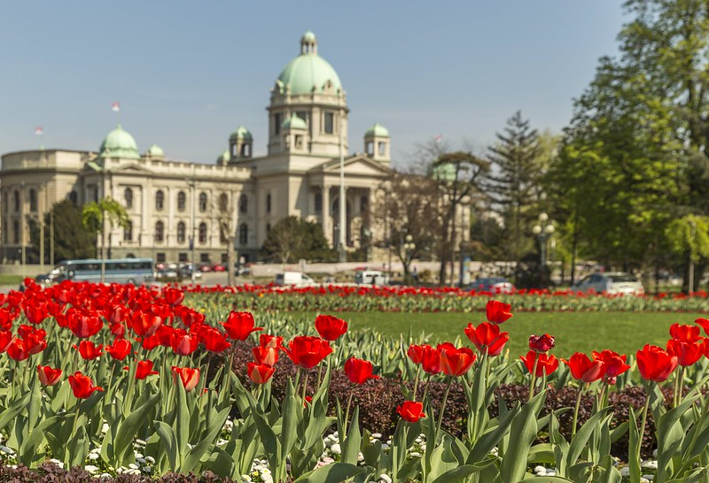 April in Belgrade
