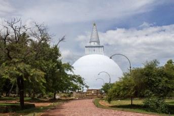 We hadden nog niet genoeg van pagoda's en dus gingen we naar Anuradhapura