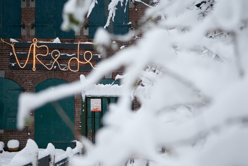 Winterbeleving