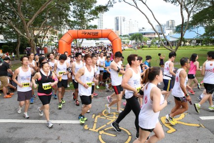 Tri-Factor Run 2013