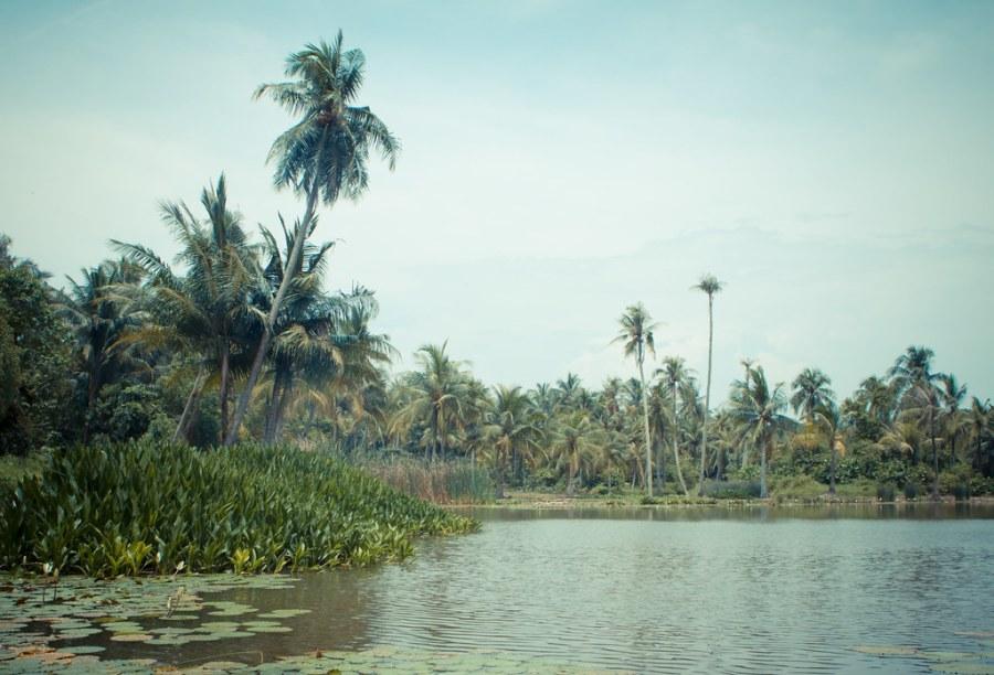 Pulau Ubinin Singapore