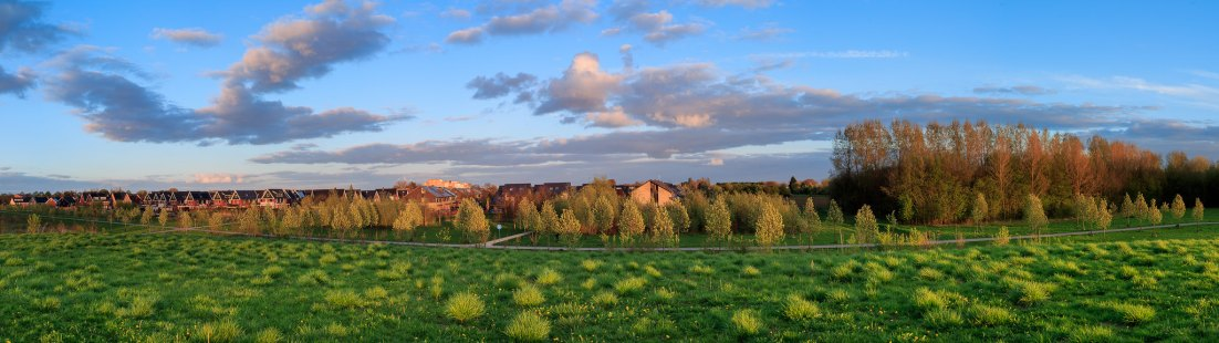 Panorama Loovelden Golden Hour