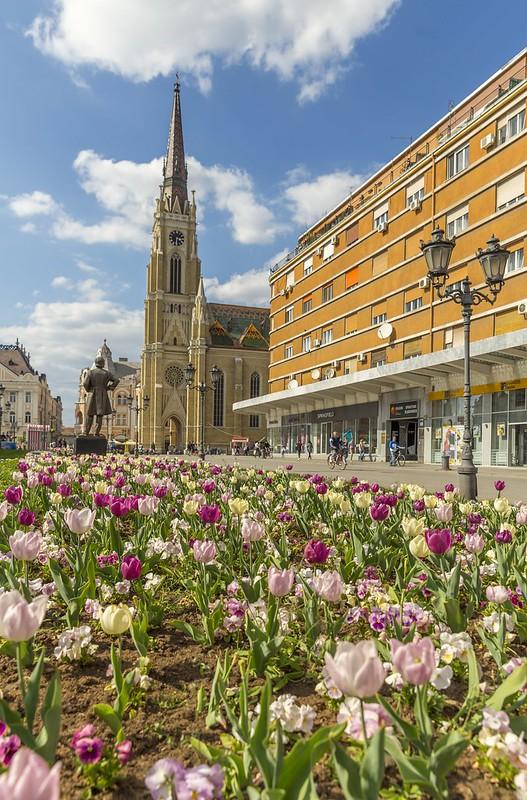 Spring day in Novi Sad