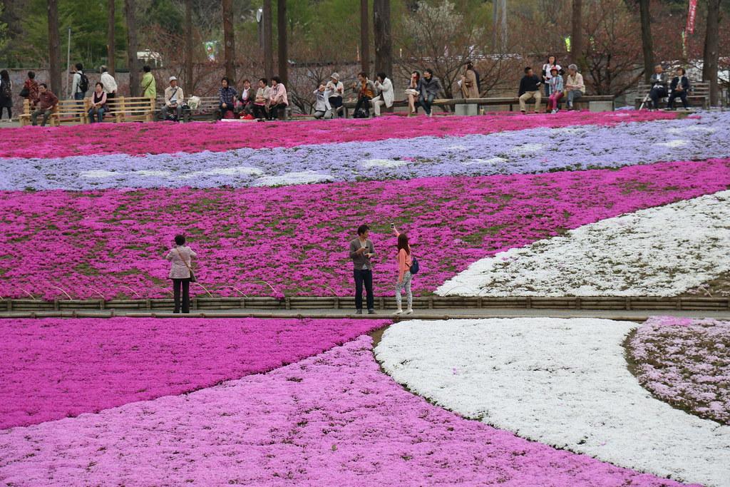 Hitsuhiyama Park