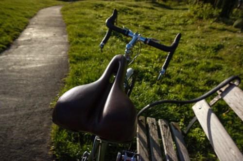 Ridgeback Expedition: saddle