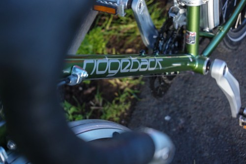 Ridgeback Expedition: brand