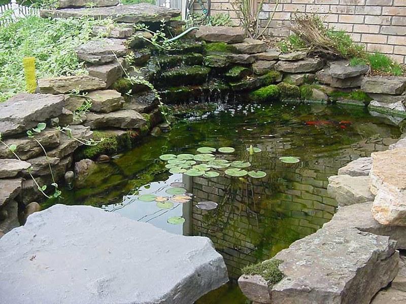 garden-pond-designs-uk