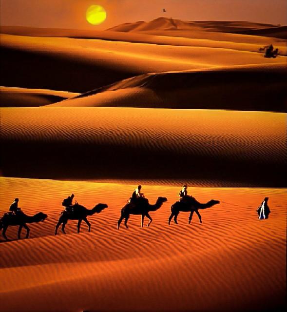 Sunset at Thar Desert.