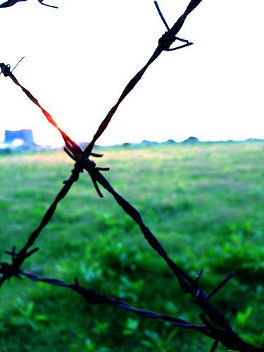 鐵絲網外的自由by hanmr | ilovecyncia | Flickr