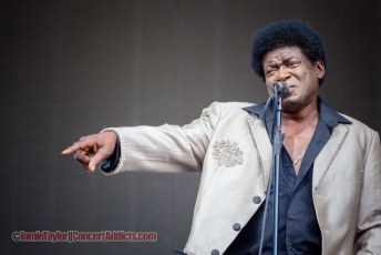 Charles Bradley @ Pemberton Music Festival - July 17th 2015