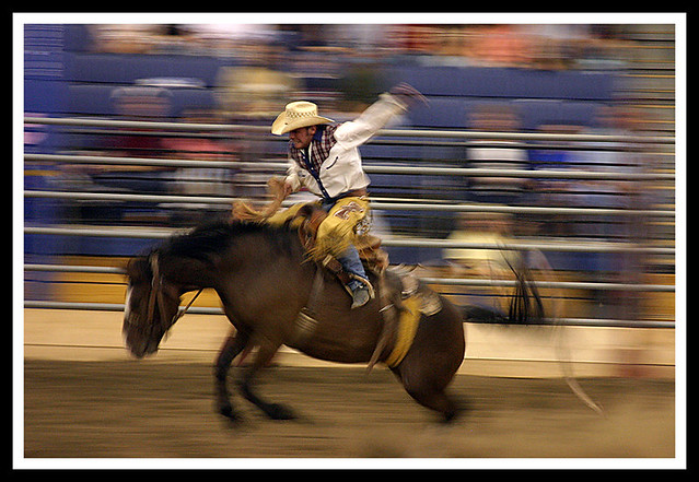 Rodeo Usa Rodeo At The Shriners Auditorium In Wilmington Flickr