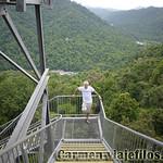 08 Viajefilos en Australia, Mamu Tropical Skywalk 004