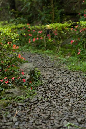 南莊.綠野仙蹤 | The path. Where do you come from and where do you … | Flickr