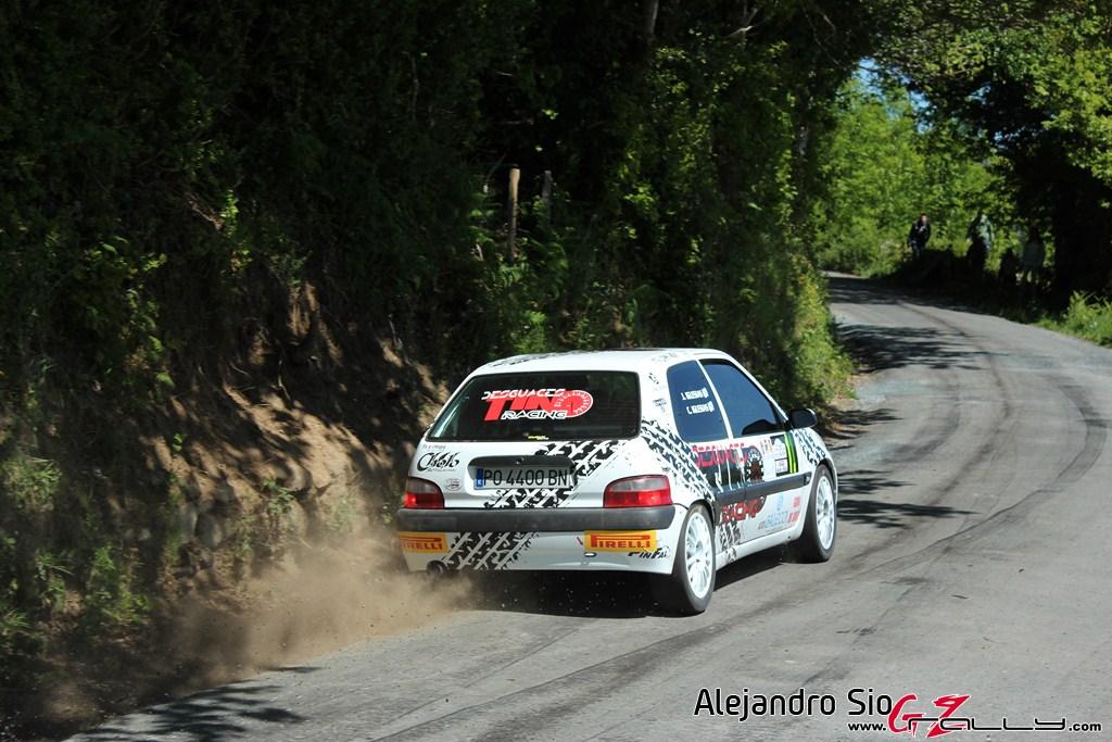 vi_rally_comarca_da_ulloa_204_20150307_1969912542