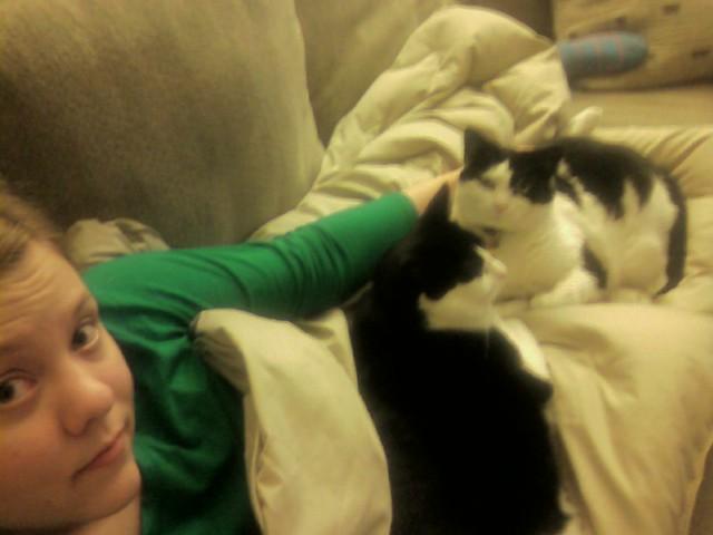 Cat Nap | The true definition of a cat nap. | LolaGeek | Flickr