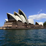 Viajefilos en Australia. Sydney  167