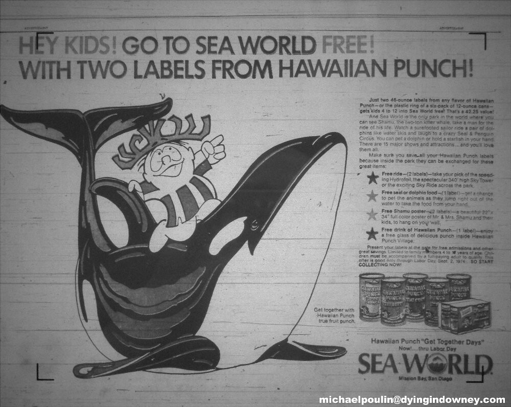 old Sea World and Hawaiian Punch ad from the 70's