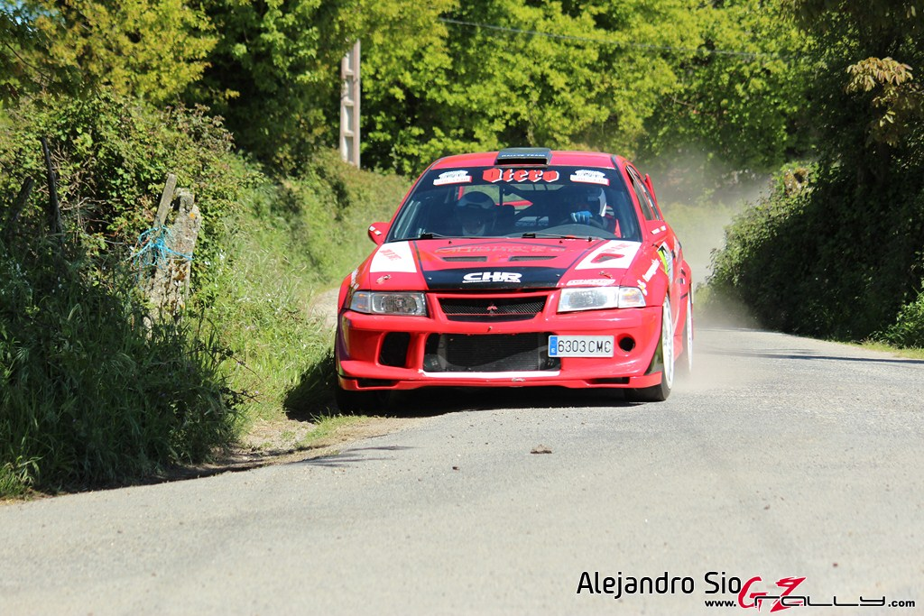 vi_rally_comarca_da_ulloa_145_20150307_2088972506