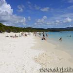 07 Viajefilos en Australia, Whitesunday Island 006