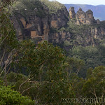Viajefilos en Australia. Blue Mountains 037
