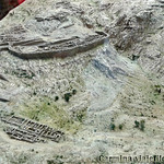 Viajefilos en Grecia, Micenas 002