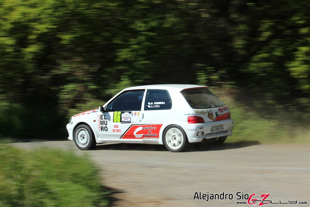 vi_rally_comarca_da_ulloa_14_20150307_1458649856