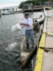 Bailing the Dinghy after Hurricane Wilma