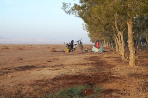 Desert camping in Syria