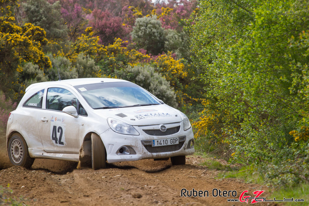 rally_de_curtis_2014_-_ruben_otero_97_20150312_1351164040