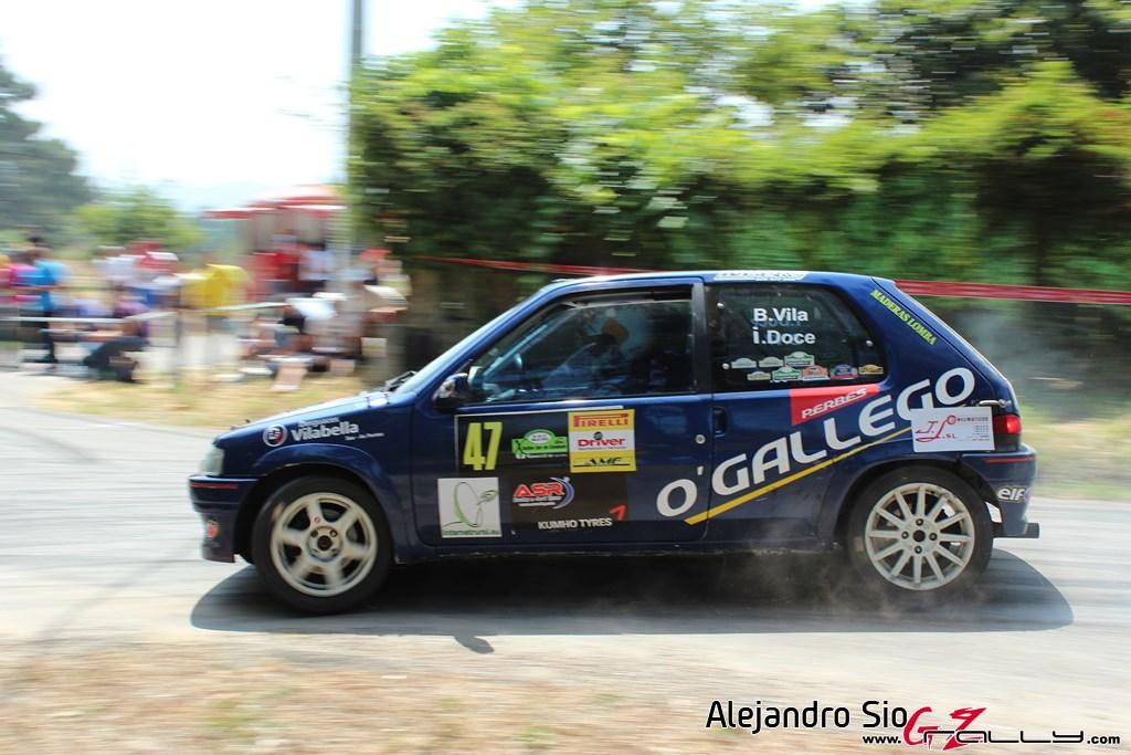 x_rally_sur_do_condado_151_20150307_1152914906