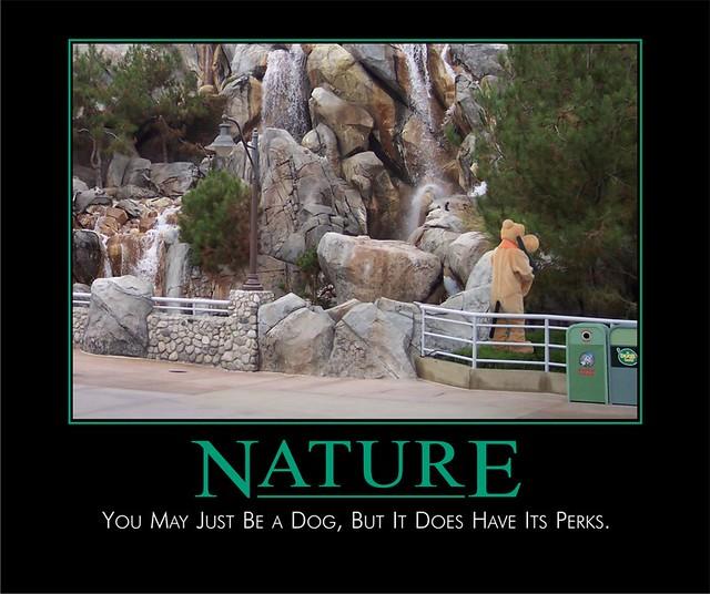 nature disney demotivational poster
