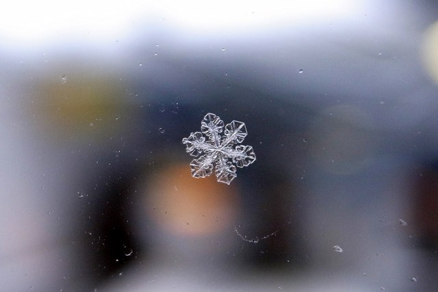 Up-close image of a single snow flake.