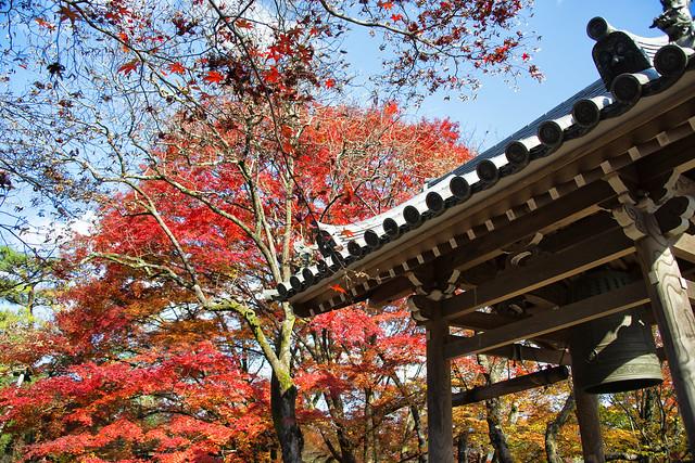Jōjakkō-ji Temple 常寂光寺