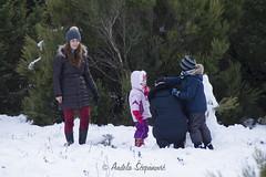 Snijeg na Dubovu, 17.01.2017.